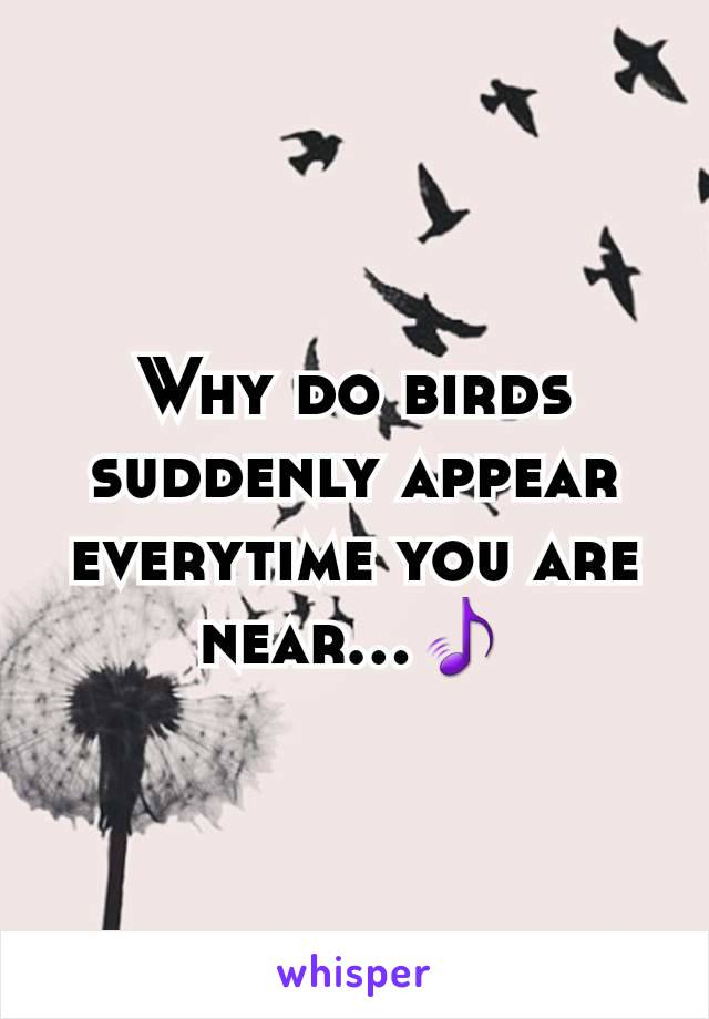 Why do birds suddenly appear everytime you are near...🎵