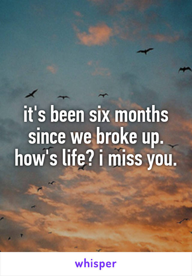 it's been six months since we broke up. how's life? i miss you.