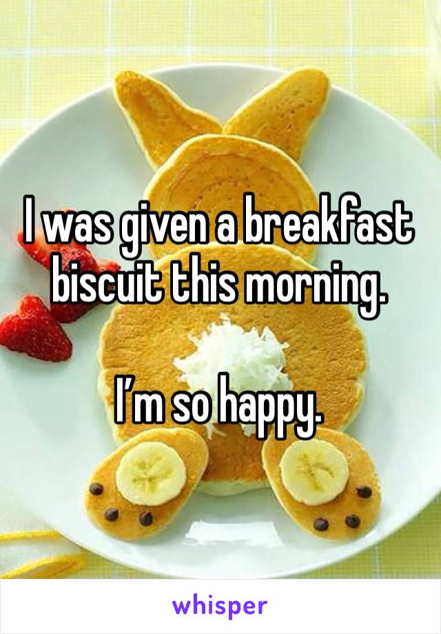 I was given a breakfast biscuit this morning.   I'm so happy.