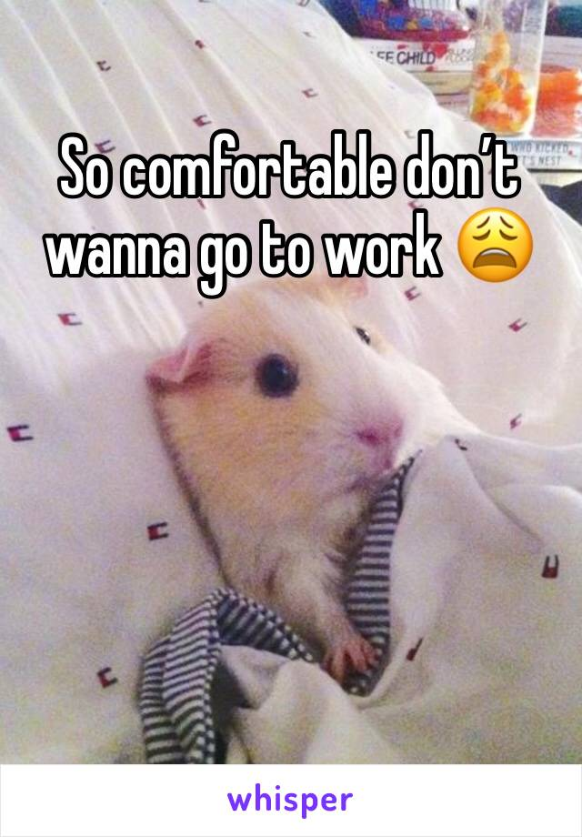 So comfortable don't wanna go to work 😩
