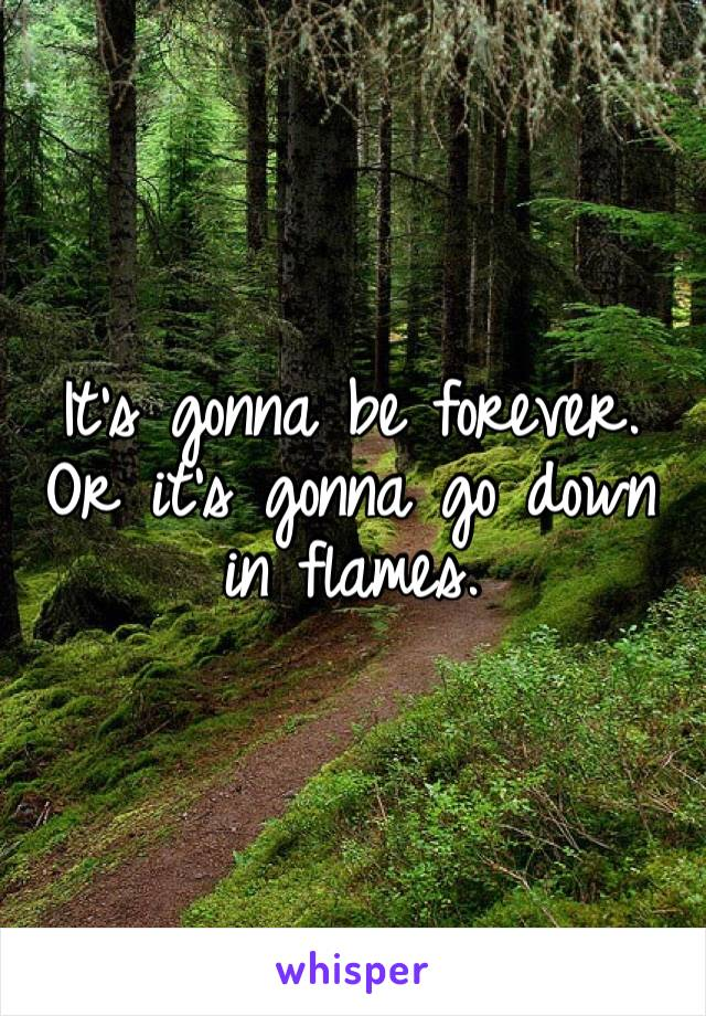 It's gonna be forever. Or it's gonna go down in flames.