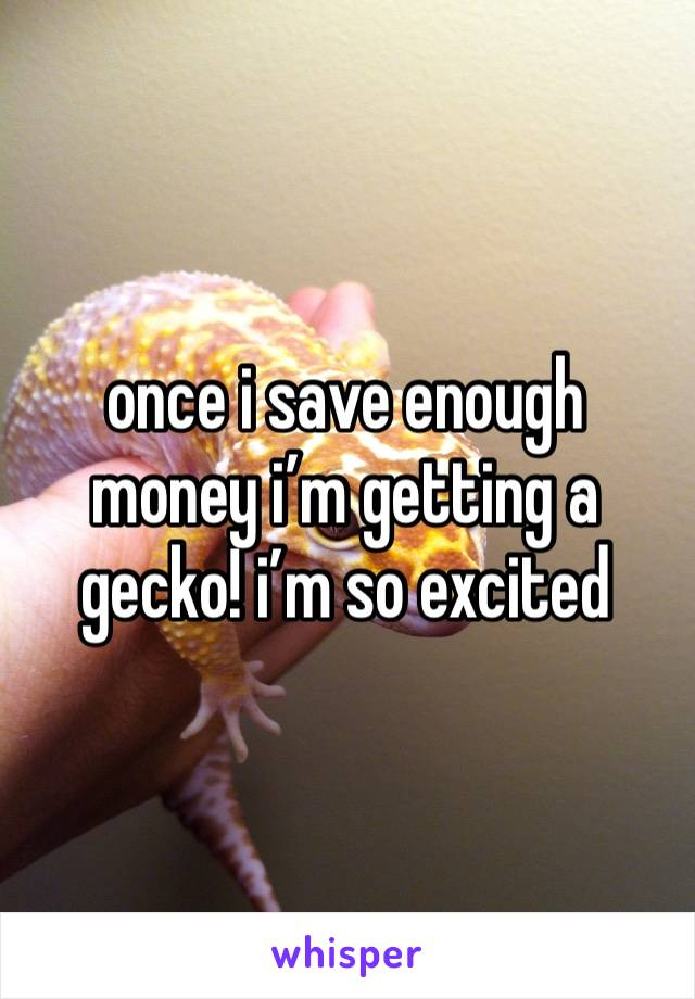 once i save enough money i'm getting a gecko! i'm so excited