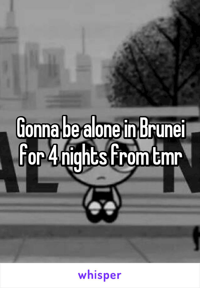 Gonna be alone in Brunei for 4 nights from tmr