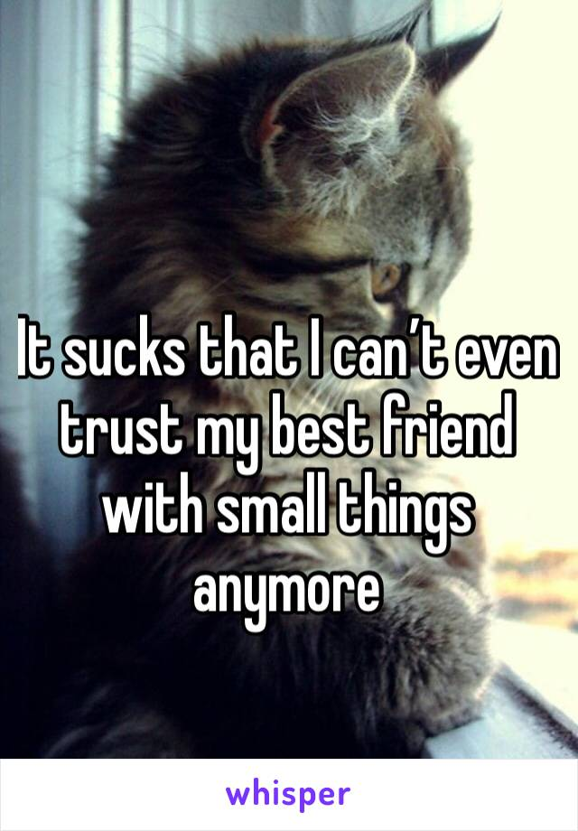 It sucks that I can't even trust my best friend with small things anymore