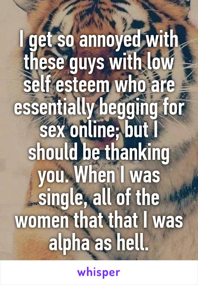 I get so annoyed with these guys with low self esteem who are essentially begging for sex online; but I should be thanking you. When I was single, all of the women that that I was alpha as hell.