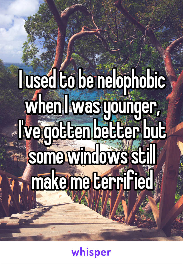 I used to be nelophobic when I was younger, I've gotten better but some windows still make me terrified