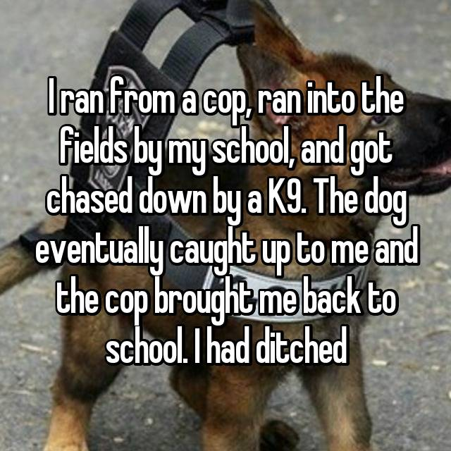 I ran from a cop, ran into the fields by my school, and got chased down by a K9. The dog eventually caught up to me and the cop brought me back to school. I had ditched