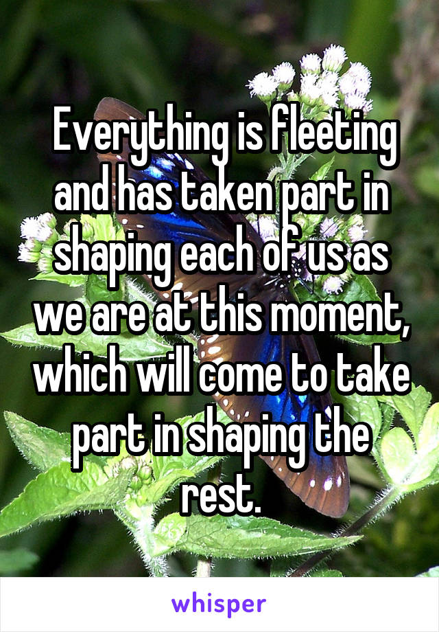 Everything is fleeting and has taken part in shaping each of us as we are at this moment, which will come to take part in shaping the rest.