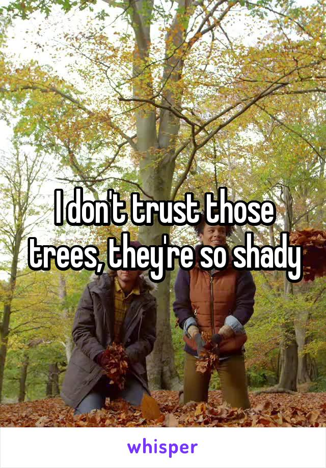 I don't trust those trees, they're so shady