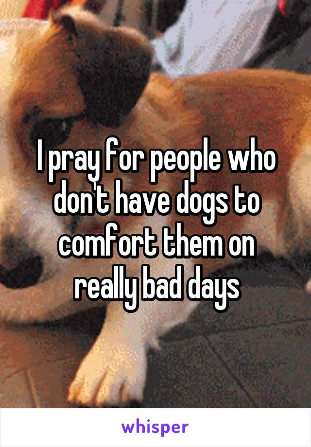 I pray for people who don't have dogs to comfort them on really bad days