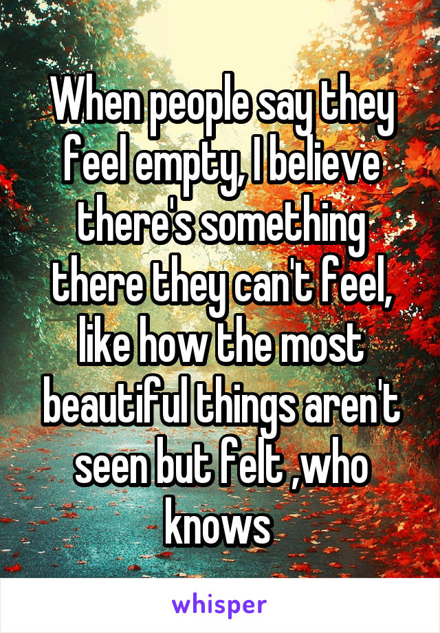 When people say they feel empty, I believe there's something there they can't feel, like how the most beautiful things aren't seen but felt ,who knows