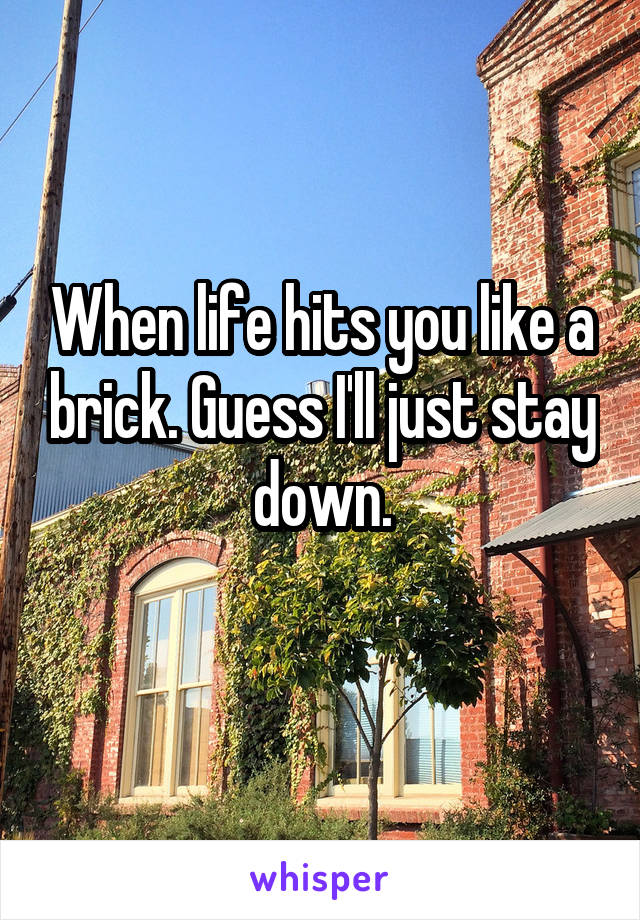 When life hits you like a brick. Guess I'll just stay down.