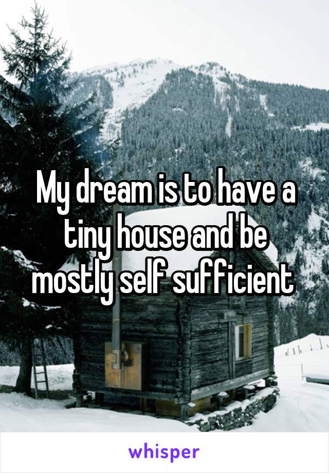 My dream is to have a tiny house and be mostly self sufficient