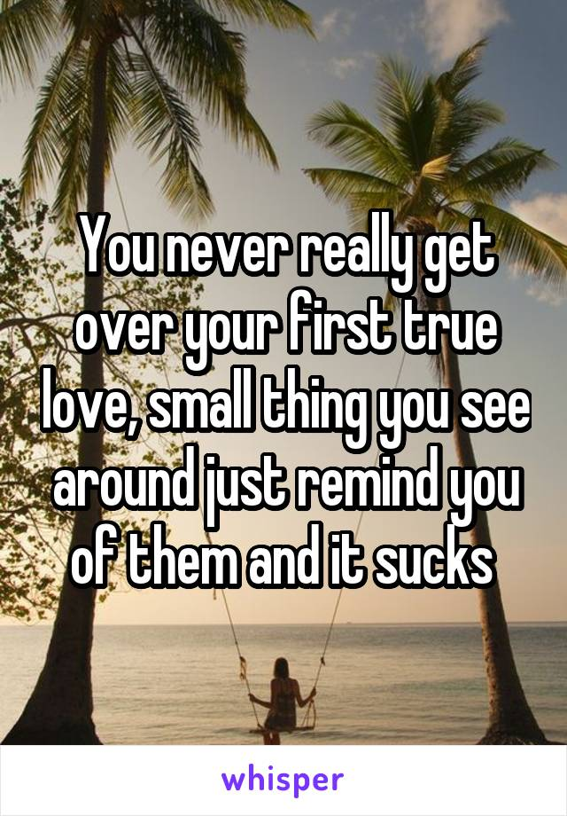 You never really get over your first true love, small thing you see around just remind you of them and it sucks