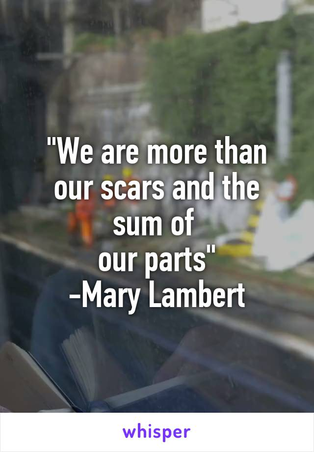 """""""We are more than our scars and the sum of  our parts"""" -Mary Lambert"""
