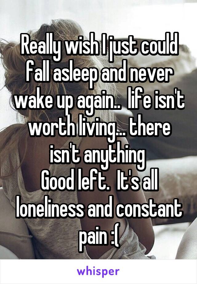 Really wish I just could fall asleep and never wake up again..  life isn't worth living... there isn't anything  Good left.  It's all loneliness and constant pain :(