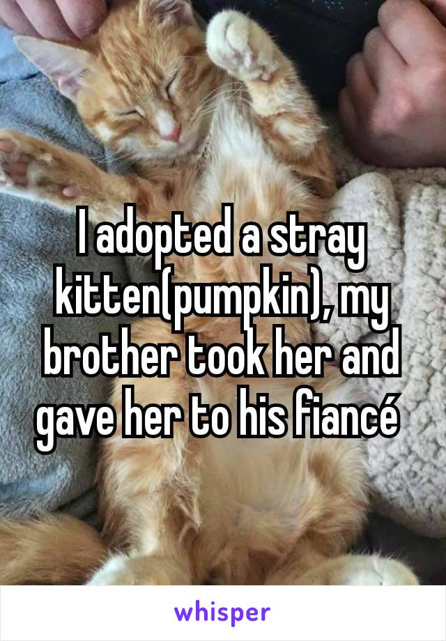 I adopted a stray kitten(pumpkin), my brother took her and gave her to his fiancé