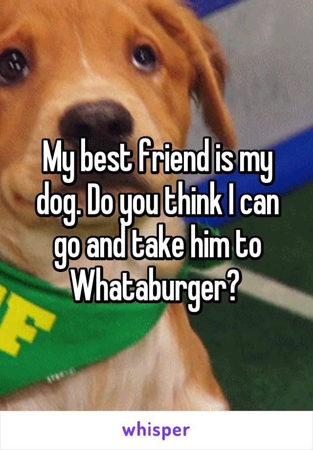 My best friend is my dog. Do you think I can go and take him to Whataburger?