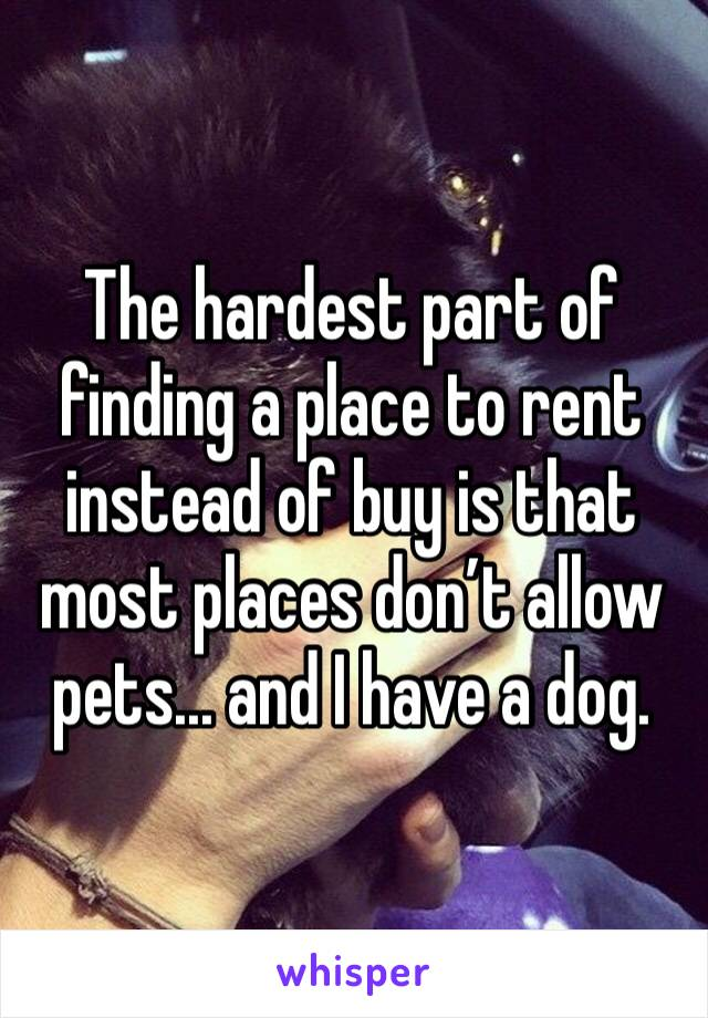 The hardest part of finding a place to rent instead of buy is that most places don't allow pets... and I have a dog.