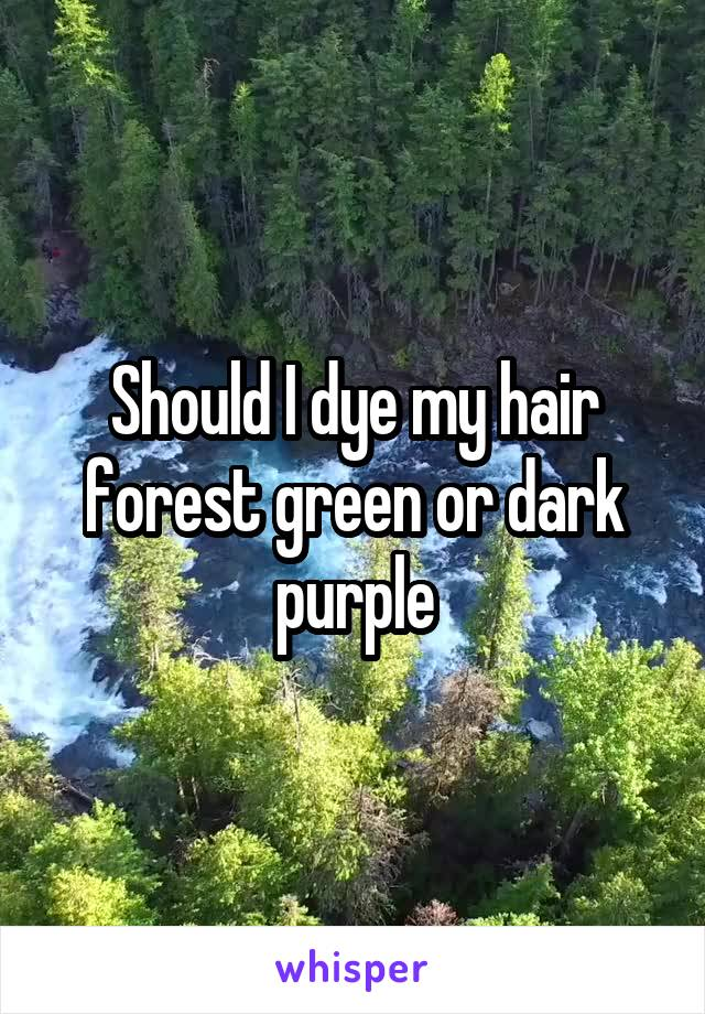 Should I dye my hair forest green or dark purple