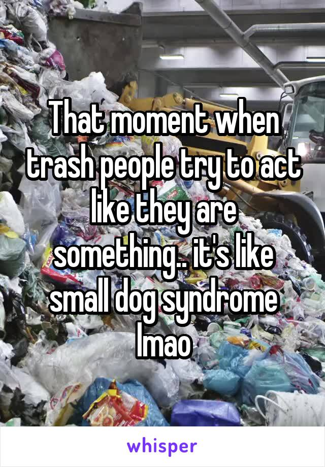That moment when trash people try to act like they are something.. it's like small dog syndrome lmao