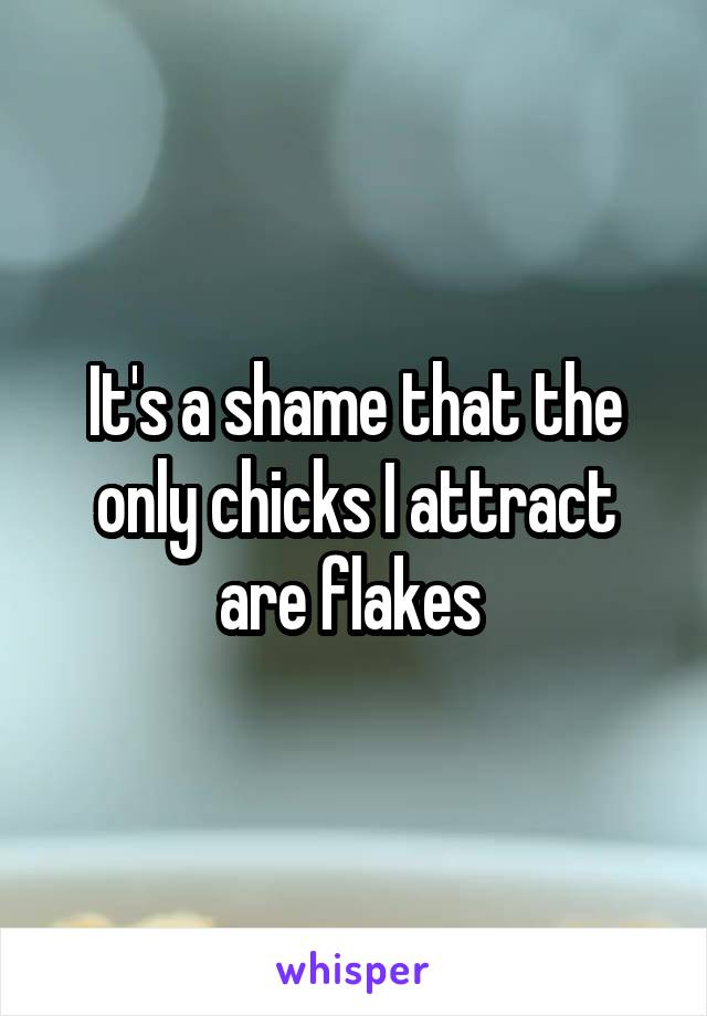It's a shame that the only chicks I attract are flakes