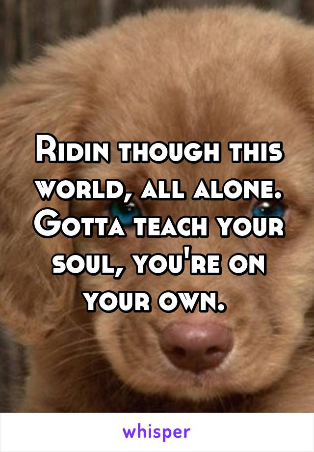 Ridin though this world, all alone. Gotta teach your soul, you're on your own.