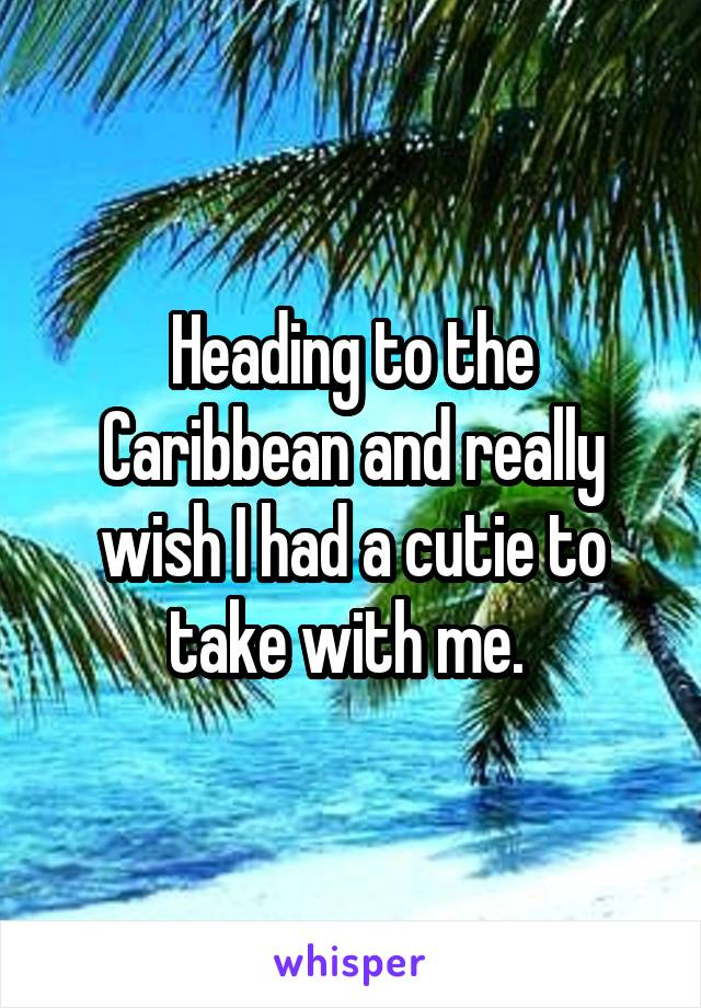 Heading to the Caribbean and really wish I had a cutie to take with me.
