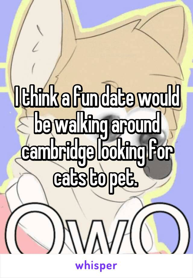 I think a fun date would be walking around cambridge looking for cats to pet.