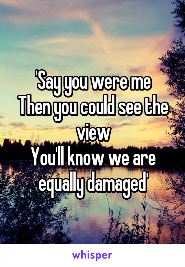 'Say you were me Then you could see the view You'll know we are equally damaged'