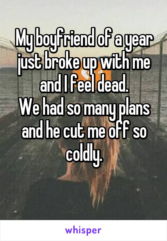 My boyfriend of a year just broke up with me and I feel dead. We had so many plans and he cut me off so coldly.