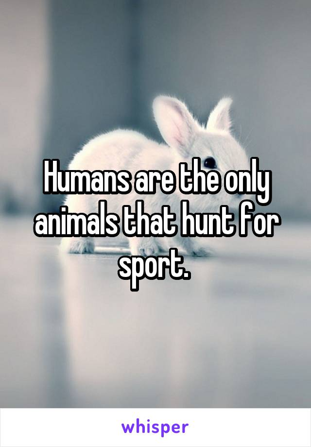 Humans are the only animals that hunt for sport.