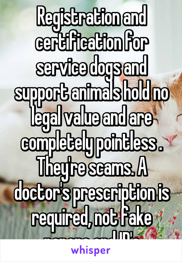 Registration and certification for service dogs and support animals hold no legal value and are completely pointless . They're scams. A doctor's prescription is required, not fake papers and ID's