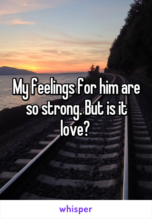 My feelings for him are so strong. But is it love?