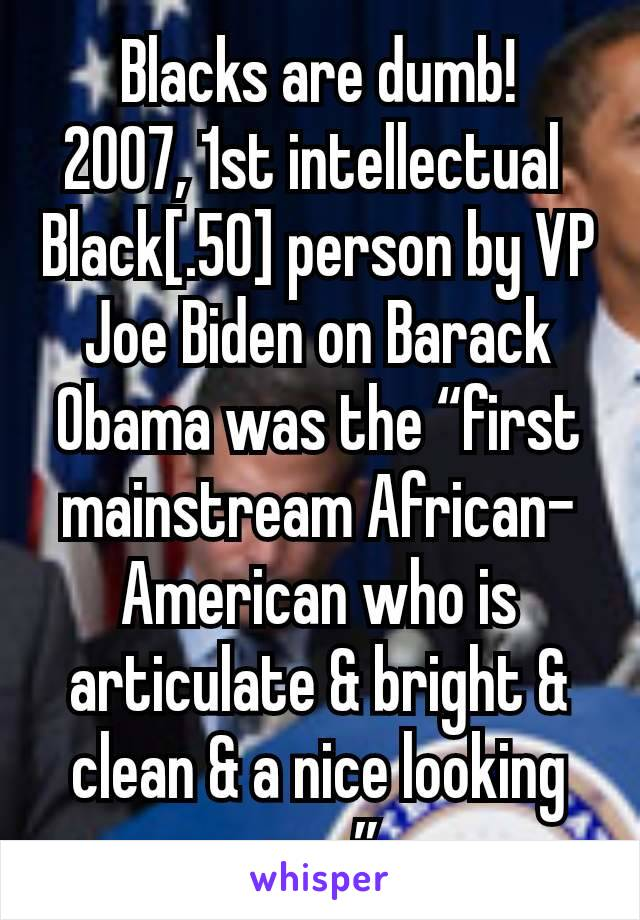 "Blacks are dumb! 2007, 1st intellectual  Black[.50] person by VP Joe Biden on Barack Obama was the ""first mainstream African-American who is articulate & bright & clean & a nice looking guy."""