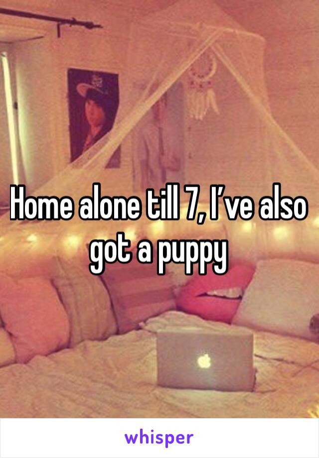 Home alone till 7, I've also got a puppy