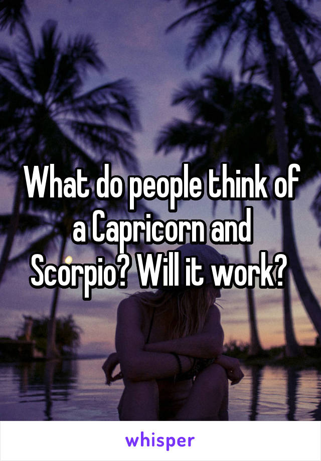 What do people think of a Capricorn and Scorpio? Will it work?