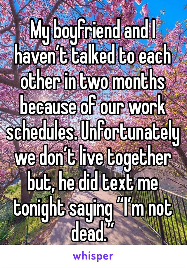 """My boyfriend and I haven't talked to each other in two months because of our work schedules. Unfortunately we don't live together but, he did text me tonight saying """"I'm not dead."""""""