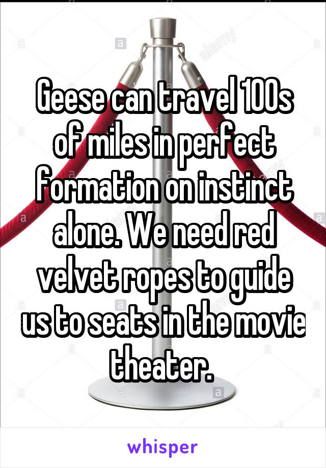 Geese can travel 100s of miles in perfect formation on instinct alone. We need red velvet ropes to guide us to seats in the movie theater.