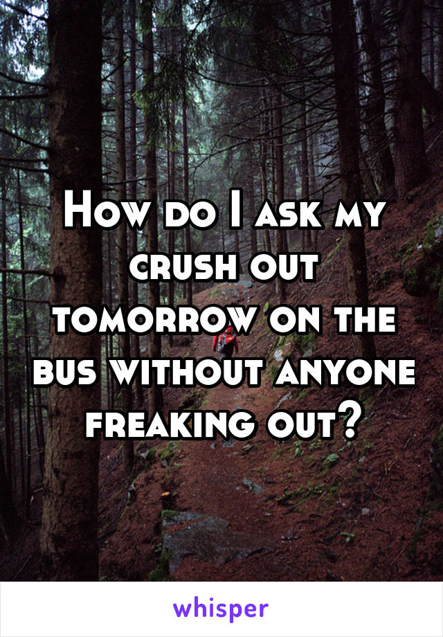 How do I ask my crush out tomorrow on the bus without anyone freaking out?