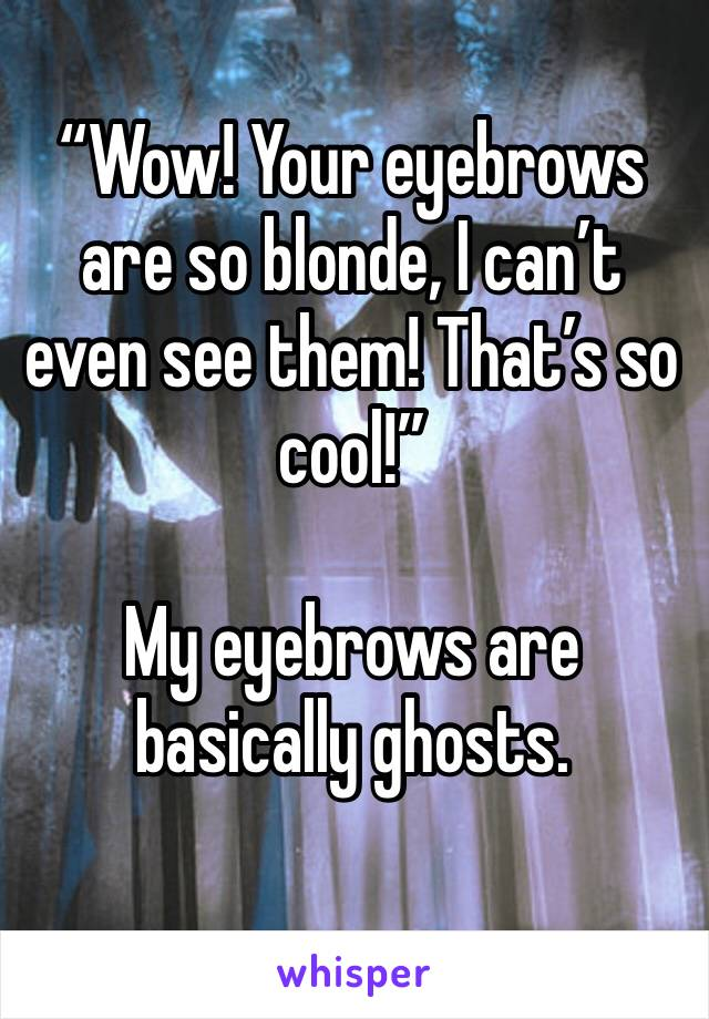 """""""Wow! Your eyebrows are so blonde, I can't even see them! That's so cool!""""  My eyebrows are basically ghosts."""
