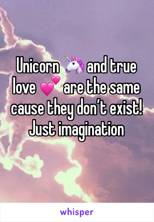 Unicorn 🦄 and true love 💕 are the same cause they don't exist! Just imagination