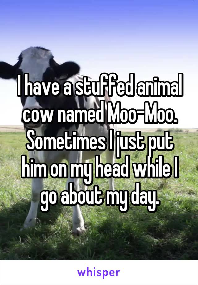 I have a stuffed animal cow named Moo-Moo. Sometimes I just put him on my head while I go about my day.