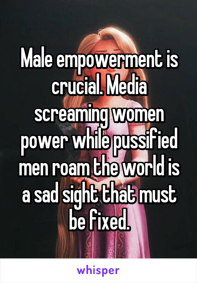 Male empowerment is crucial. Media screaming women power while pussified men roam the world is a sad sight that must be fixed.