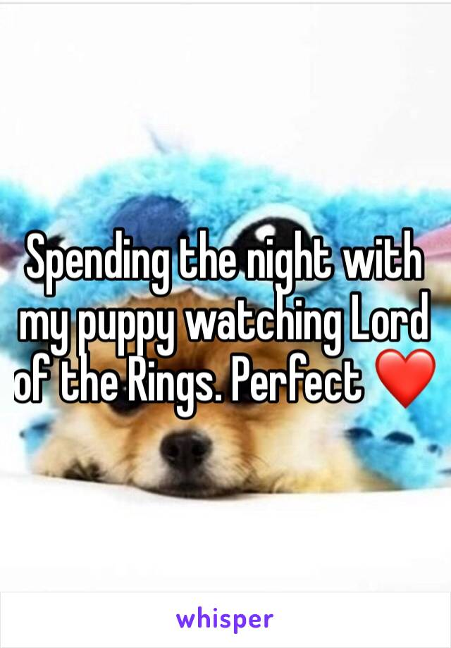 Spending the night with my puppy watching Lord of the Rings. Perfect ❤️
