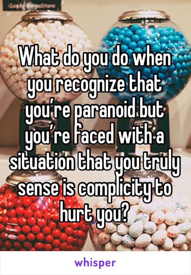 What do you do when you recognize that you're paranoid but you're faced with a situation that you truly sense is complicity to hurt you?