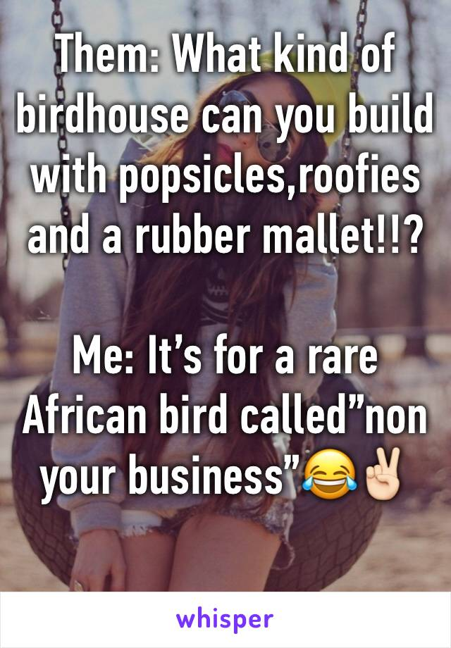 """Them: What kind of birdhouse can you build with popsicles,roofies and a rubber mallet!!?  Me: It's for a rare  African bird called""""non your business""""😂✌🏻"""