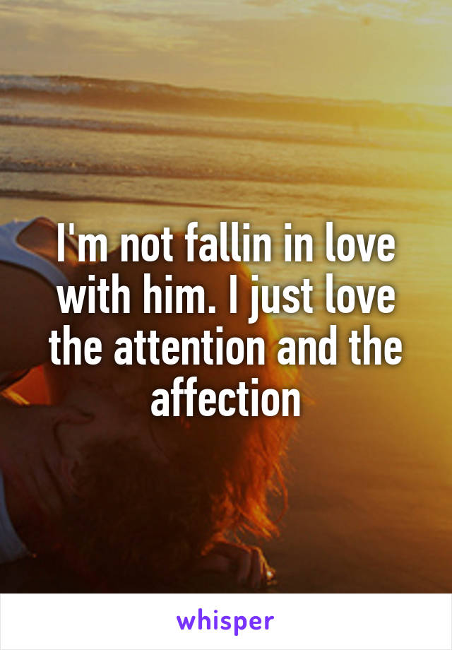 I'm not fallin in love with him. I just love the attention and the affection