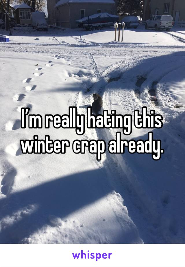 I'm really hating this winter crap already.