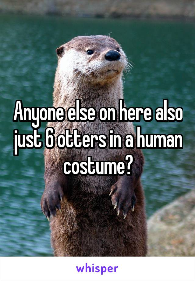 Anyone else on here also just 6 otters in a human costume?